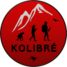 Normal_kolibre-1512588133