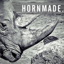 Normal_21022014-hornmade