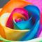 Thumb_sans-titre-1430140480
