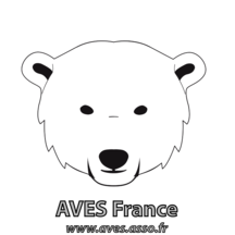 Normal avesfrance 1542321714