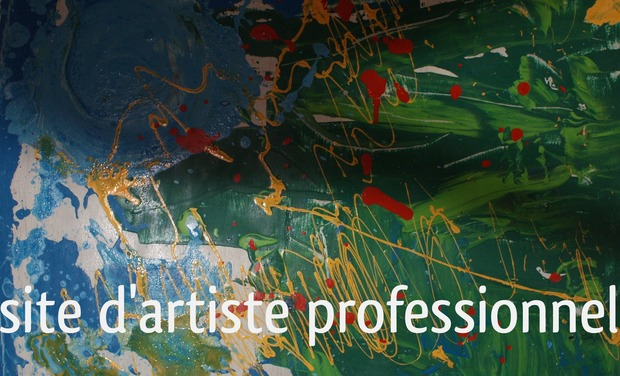 Project visual site d'artiste professionnel