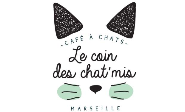 Visuel du projet Le coin des chat'mis - Café/Bar à chats Marseille