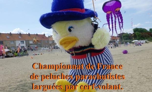 Visuel du projet Championnat de France de peluches parachutistes larguées par cerf-volant
