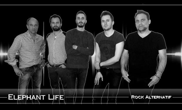 Visuel du projet ELEPHANT LIFE enregistrement d'un premier EP 4 titres numérique