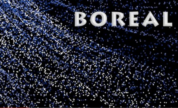 Visuel du projet Boréal, Un concept art numérique inédit pour l'hôpital !