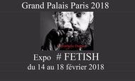 Widget_grand_palais-1516047462