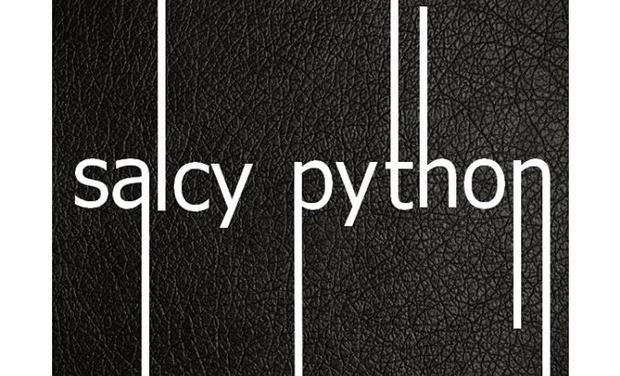 Visuel du projet Salcy Python sort son prochain EP (4 titres)