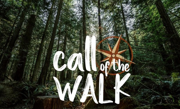 Visuel du projet Call of the Walk