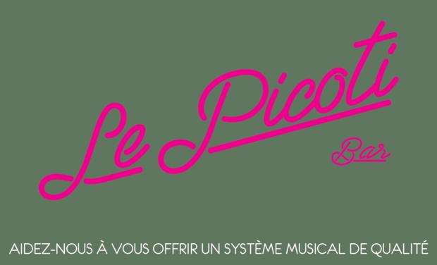 Visuel du projet Financez Un nouveau Matériel sonore pour le Picoti (Mairie de la Nuit ds le 18)