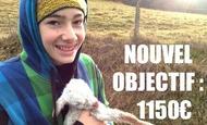 Widget_nouvel-objectif-1517827266
