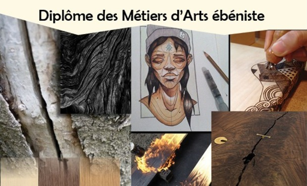 Visuel du projet Diplôme des Métiers d'Arts ébéniste / Projet de fin d'étude
