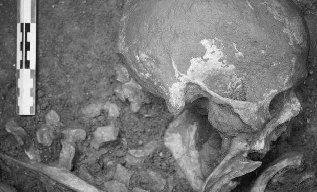 Visuel du projet Participez à l'étude archéologique du village alto-médiéval de Sainte-Candie!