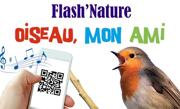 Project visual Flash'Nature - Oiseau, mon ami