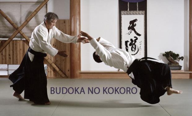 Visuel du projet BUDOKA NO KOKORO