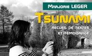 Widget_tsunami_livre-1517827848