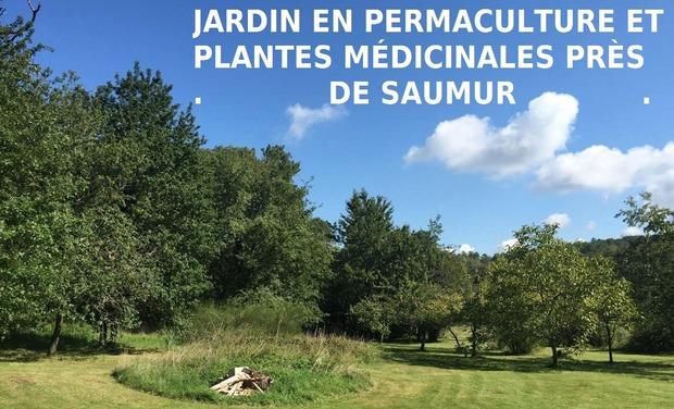Project visual Jardin en permaculture et plantes médicinales près de Saumur.