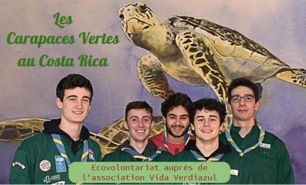 Project visual Les Carapaces Vertes au Costa Rica