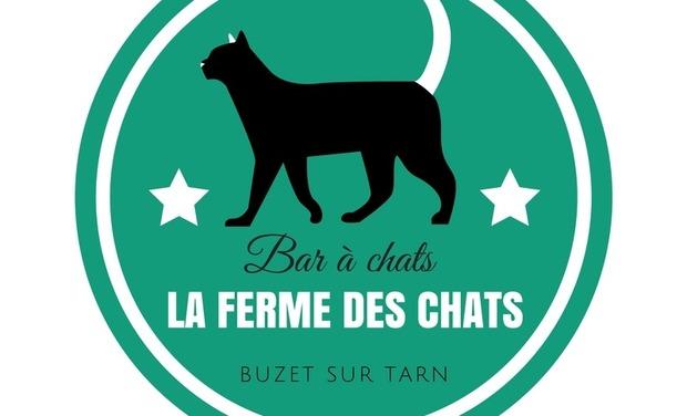 Large_la_ferme_des_chats-1519502108