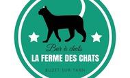 Widget_la_ferme_des_chats-1519502108