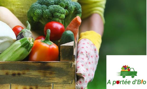 Visuel du projet Fruits et légumes bio en livraison à domicile