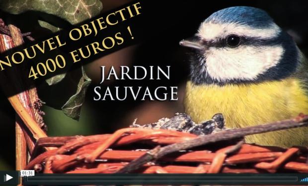 Visuel du projet Jardin Sauvage: un safari local pour un documentaire original!