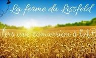 Widget_la_ferme_du_lissfeld-1520075692