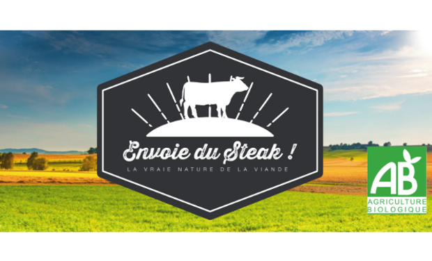 Project visual Envoie du Steak !