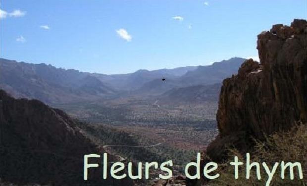 Visuel du projet Accompagnons les femmes cueilleuses de plantes aromatiques au Maroc