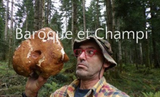 Project visual Le Monde des Champignons
