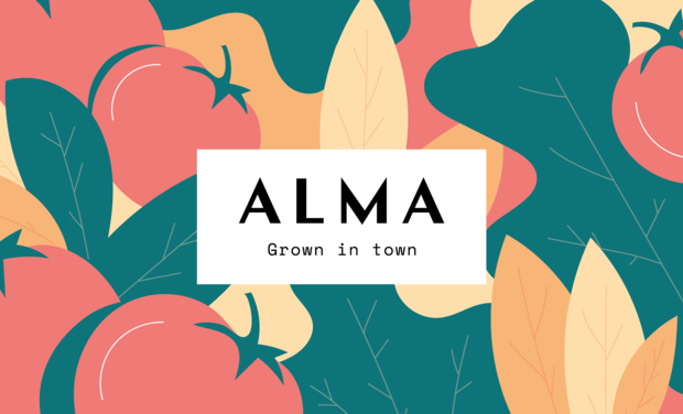 Project visual ALMA grown in town