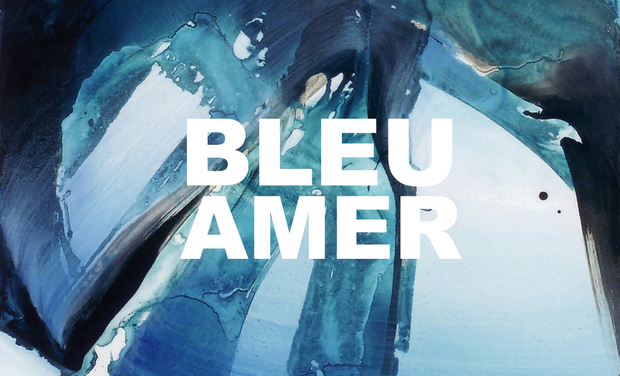 Project visual Bleu amer
