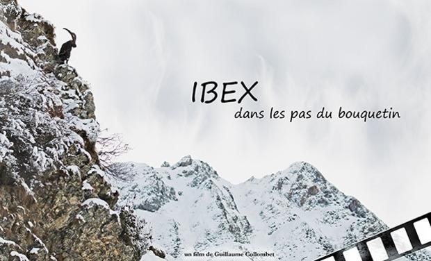 Visuel du projet IBEX, dans les pas du bouquetin