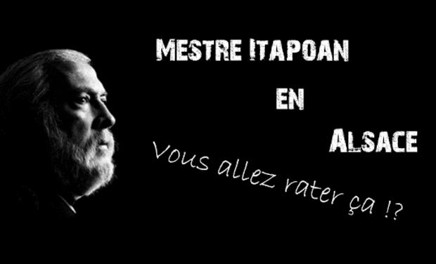 Visuel du projet Festival de Capoeira: Mestre Itapoan en Alsace