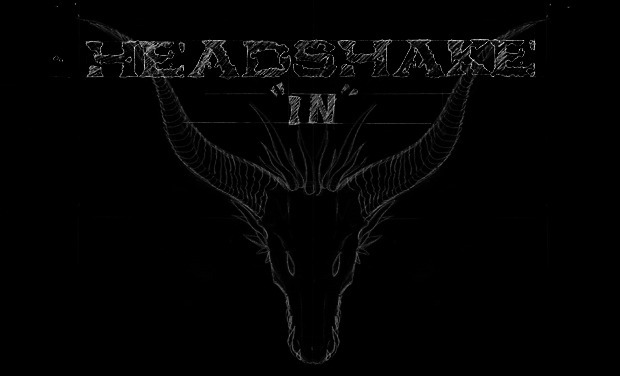 Project visual Headshake - Projet clip vidéo