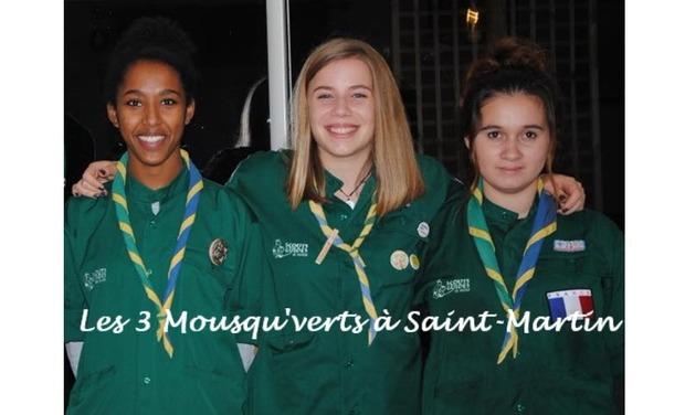 Visuel du projet Les 3 Mousqu'verts rénovent l'île de Saint-Martin