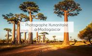 Widget_mdgct005_morondava-baobab-circuits-madagascar-tui-1528204173