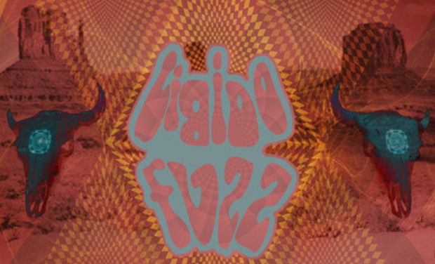 Visuel du projet We're a Heavy Psychedelic Boogie Band, We're Libido Fuzz