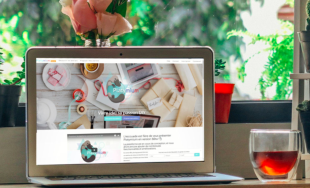 Visuel du projet Platymium : nous créons du lien pour réveiller votre âme de créateur & créatrice