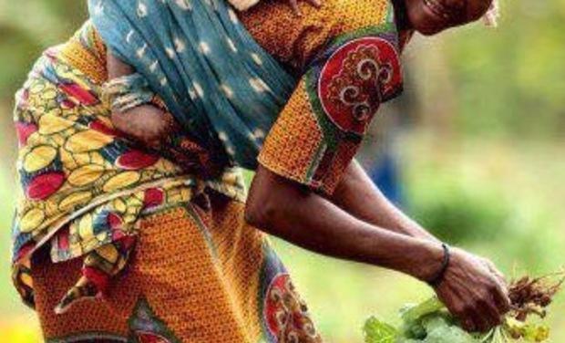 Project visual Un centre de formation pour les mères-veilleuses d'Ampazony