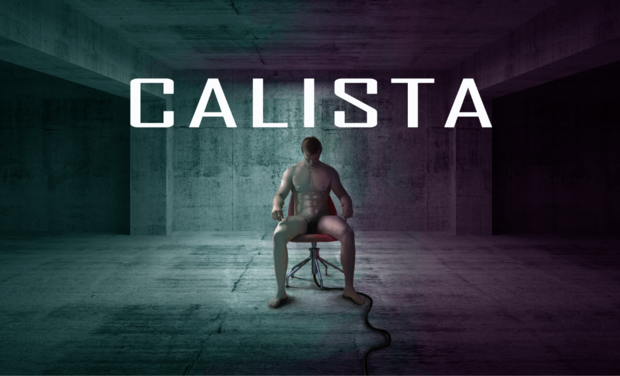 Project visual Calista
