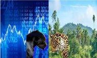 Widget_ecosysteme_panth_re-1526530215