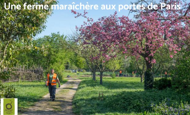 Visuel du projet Une ferme maraîchère aux Portes de Paris
