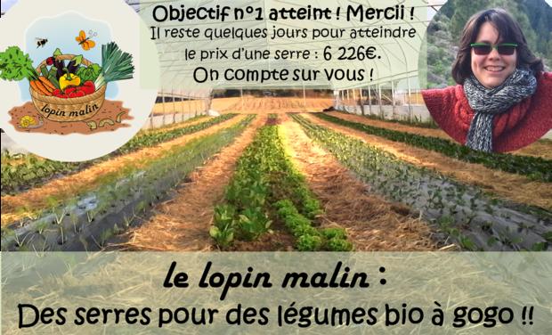 Visuel du projet Plus de serres pour des légumes bio à Gogo !!