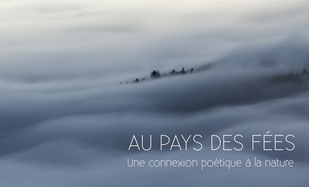 Project visual Au Pays des Fées