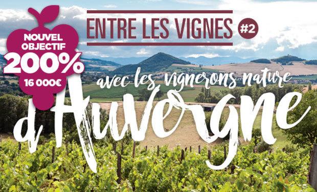 Visuel du projet ELV#2 avec les Vignerons Nature d'Auvergne