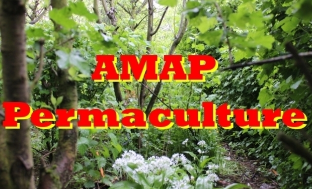 Project visual AMAP-Permaculture paye son terrain