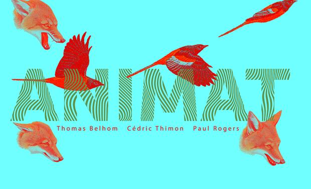 Visuel du projet ANIMAT : premier album de Thomas, Paul & Cédric