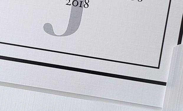 Visuel du projet Nominé aux Josie Music Awards 2018 - USA