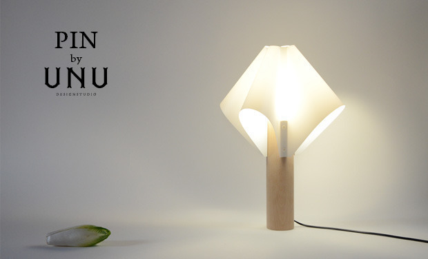 Visueel van project PIN by UNU studio
