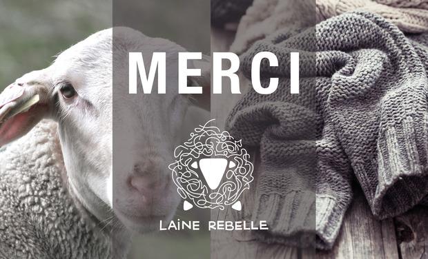 Visuel du projet Laine Rebelle : renaissance d'une filière laine